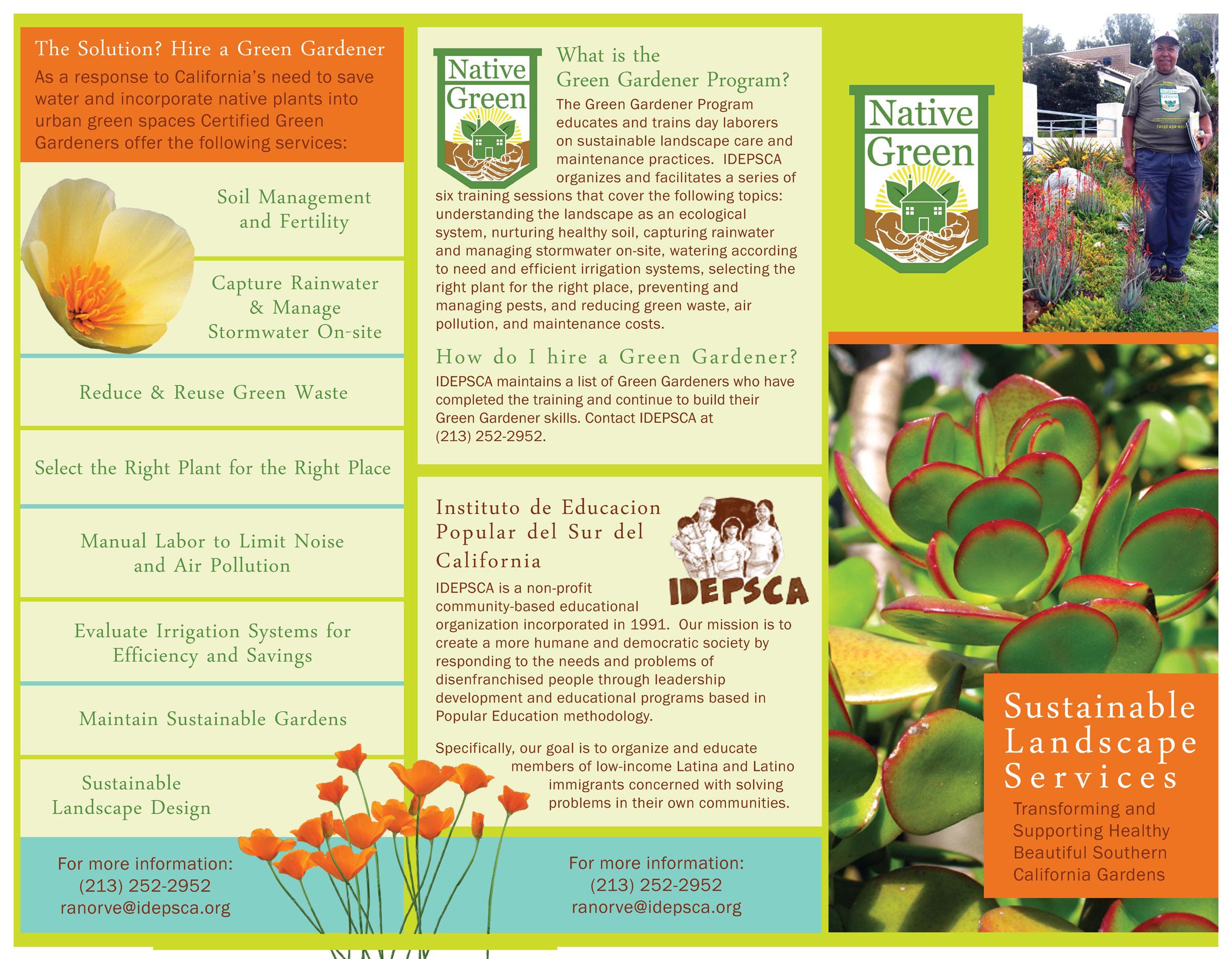 NativeGreenBrochureForWebJpg   Design  Brochures